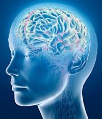 зажат сосуд головного мозга